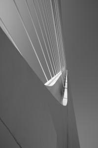 Blanco y negro - Jesmo - Dig - 5