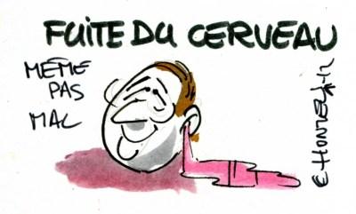 Fuite de cerveau (Crédits : René Le Honzec/Contrepoints.org, licence Creative Commons)
