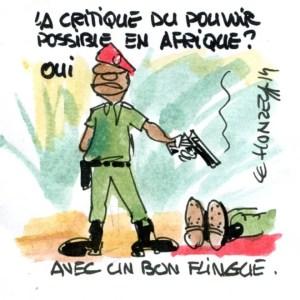 Pouvoir Afrique (Crédits : René Le Honzec/Contrepoints.org, licence Creative Commons)