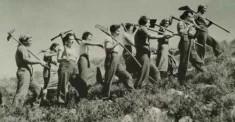 Travailleuses dans un kibboutz