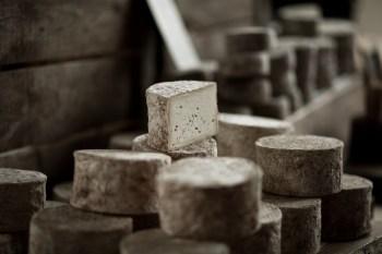 fromages sur bois