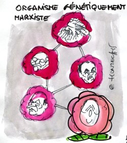 Contrepoints807 - OGM - René Le Honzec