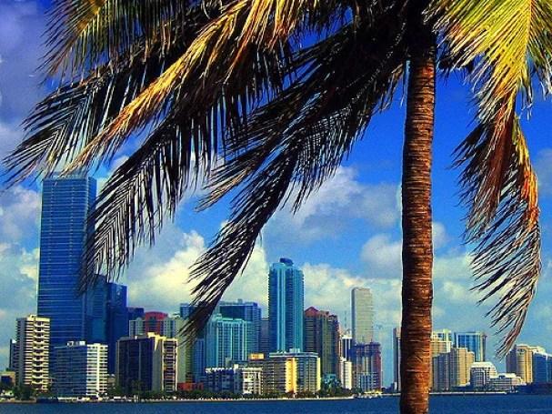 Ma vie d'expat à Miami
