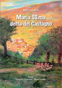 Notizie storiche sulla Madonna del Castagno