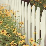 Broken Families and White Picket Fences
