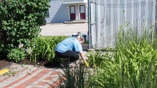 Convergint day women gardening