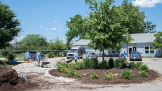 Convergint day colleagues gardening