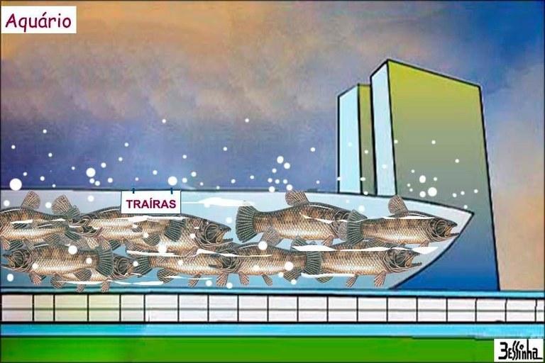 aquário.jpg