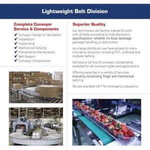LIghtweight Division Belt Flier