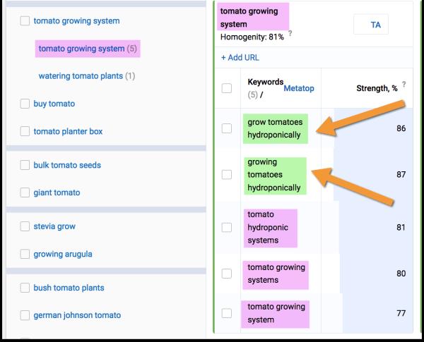 Serpstat keyword clustering