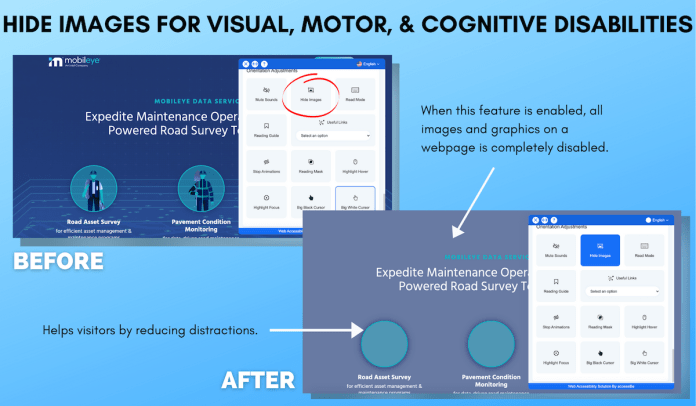 Mobileye Hide Images for Visual Motor Cognitive Disabilities