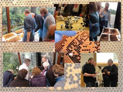 Disease workshop 2012