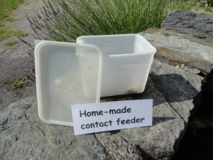 home made rapid feeder