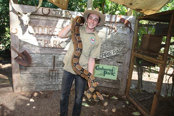 snake-encounter