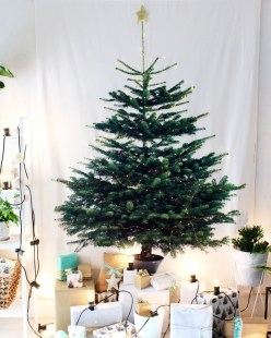 Fascinating Christmas Decor Ideas For Small Spaces 27