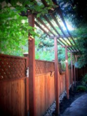 Charming Privacy Fence Ideas For Gardens 32