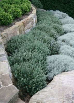 Cozy Rock Garden Landscaping Ideas For Make Your Yard Beautiful 16