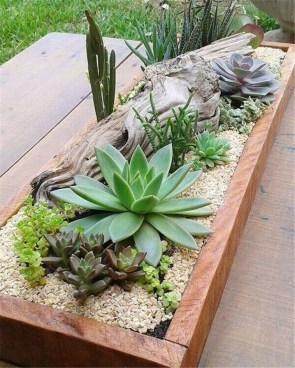 Awesome Succulent Garden Ideas In Your Backyard 42