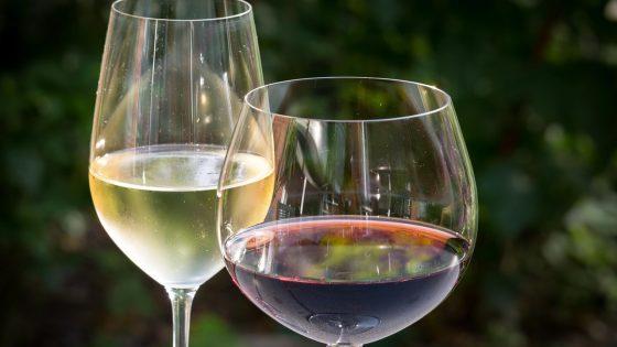 différence entre verre à vin rouge et verre à vin blanc