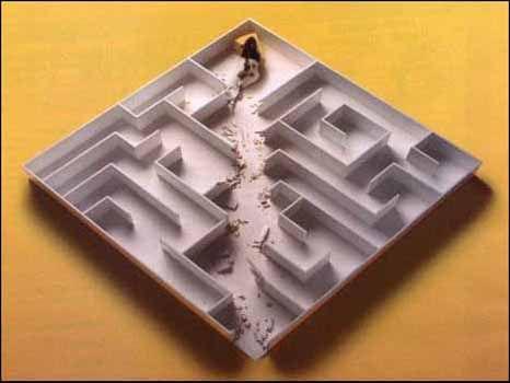 the better rat maze