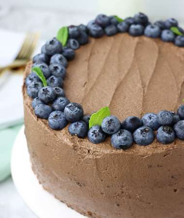 two layer chocolate cake with fresh blueberries and mint on top.