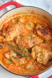 chicken stew in a dutch oven