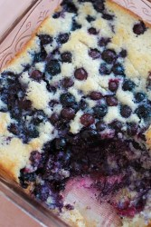 Southern blueberry cobbler in a 9x9 baking dish.