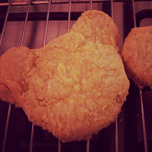 Bear-Biscuits