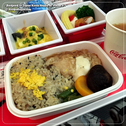 jal-japan-airlines-food-meal-review-coca-cola-green-tea-miso-soup-bento-haagen-dazs