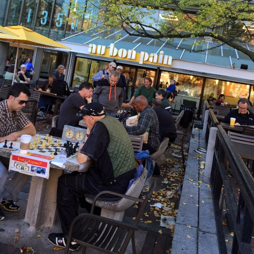 au-bon-pain-harvard-university-boston-aging-society-first-chess-old-man-retired-early-passive-income