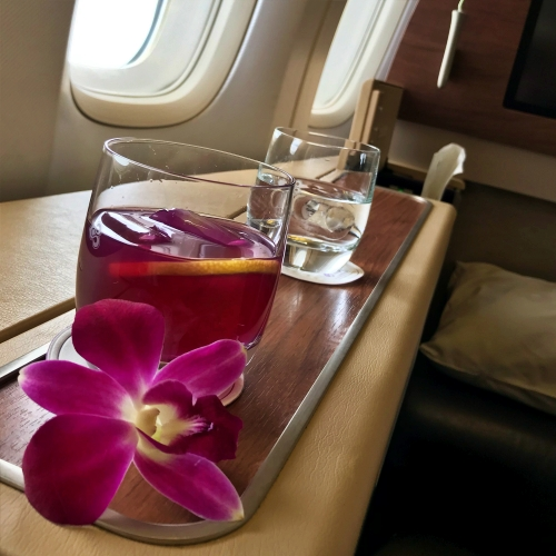 tg-thai-airways-first-class-review-747-tokyo-japan-blogger-sponsor-seat-orchid-violet-bliss