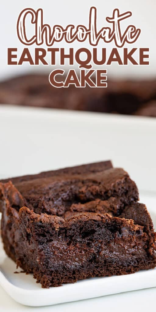 zoomed in photo of a slice of cake with text at the top of image