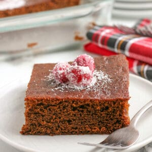 square image of an zoomed in photo of gingerbread cake on a white plate