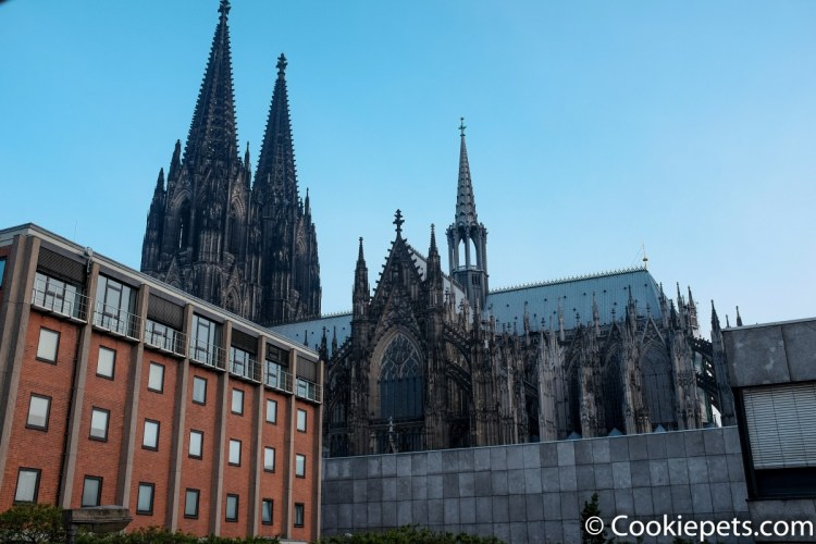 Cologne Cathedral (view from the hotel window)