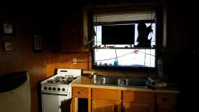 Florida's kitchen