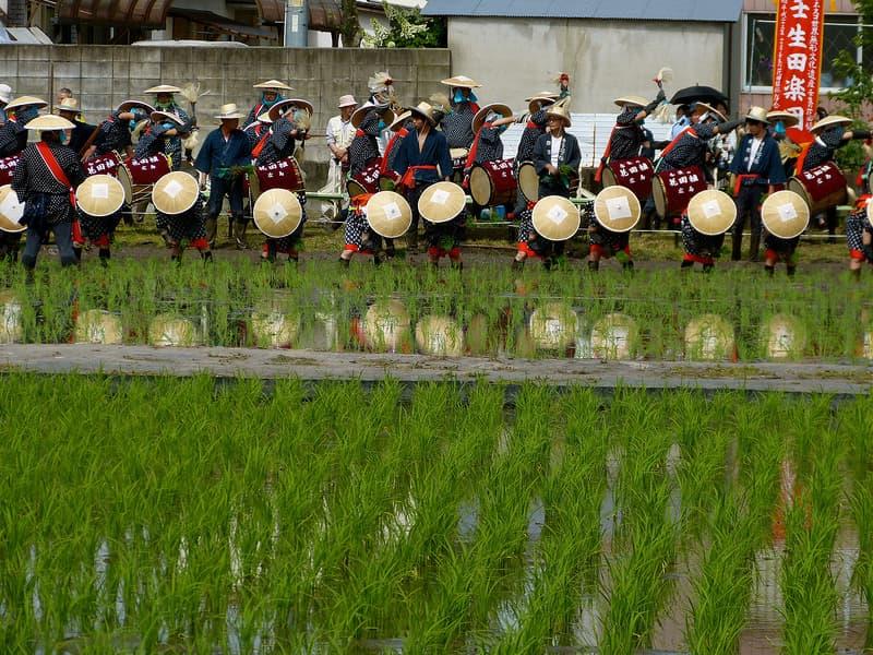 Rice planting ritual, dancing people