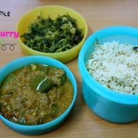 Colour Rice with Vankaya Kura ~ A Quick Andhra Meal