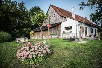 Buschenschank & Jogakurse im alten Presshaus