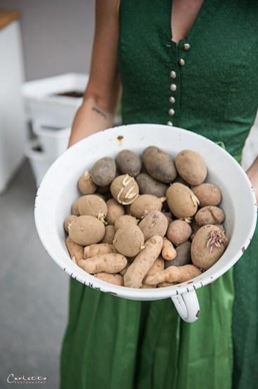 Kartoffelturm Paul Potato