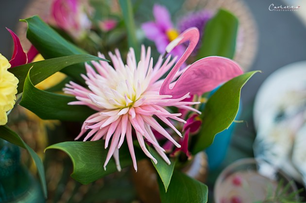 Aloha Blumen_0401