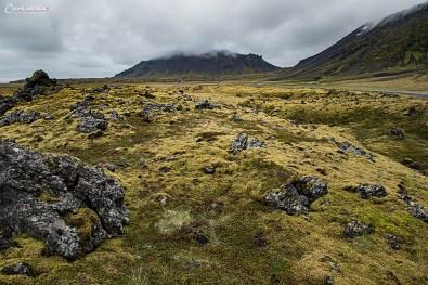 Island Snaefellsnes_6542