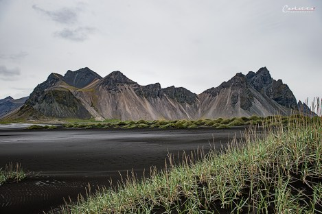 Island Vesturhorn_7890