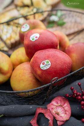 Südtiroler Apfelstrudel_6733