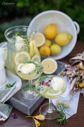 Zitronen Rosmarin Bowle_7006