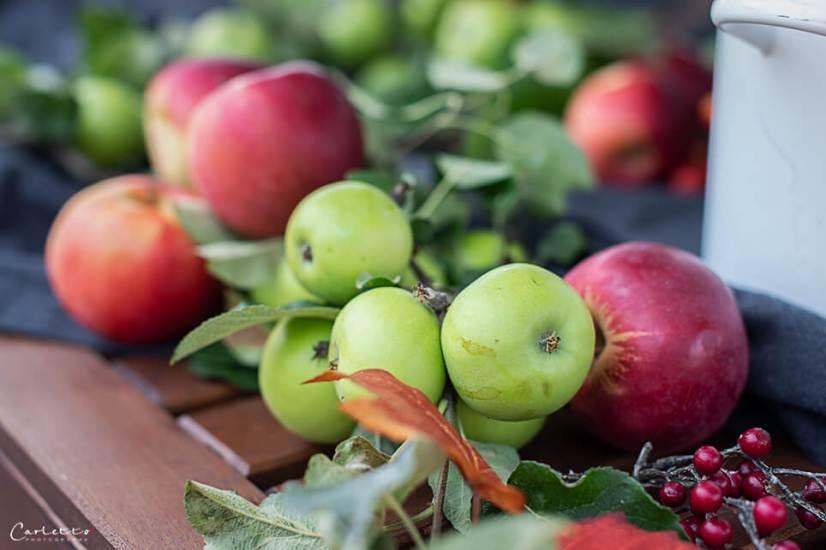 Apfelsaft selber machen_7717