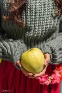 Bio Äpfel