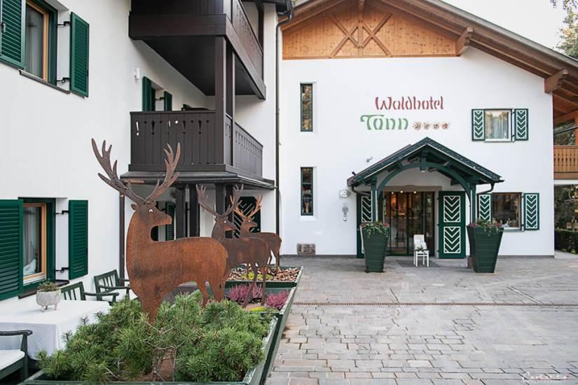 Südtirol Hotel Tann_1669