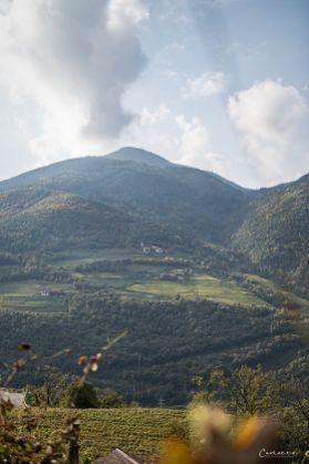 Südtirol Loaker_1485