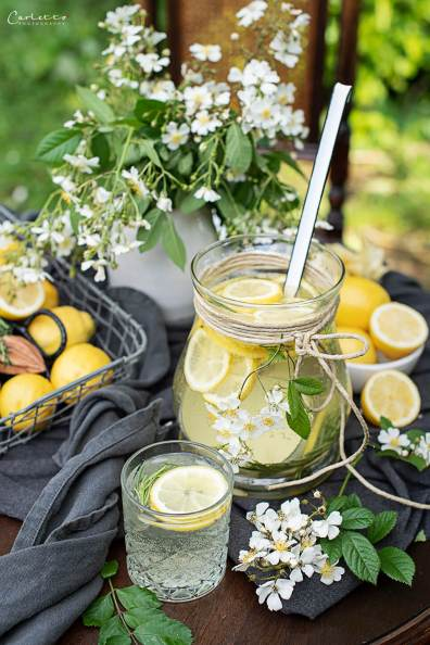 Gartenshooting Zitronen Bowle mit Rosmarin_7963