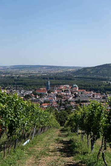 Österreich Wein Kerbl_1607